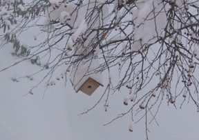 snow birdhouse
